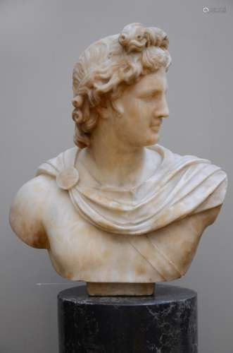 'Apollo' bust in alabaster on a scaglioli base, 19th century (50x54cm)