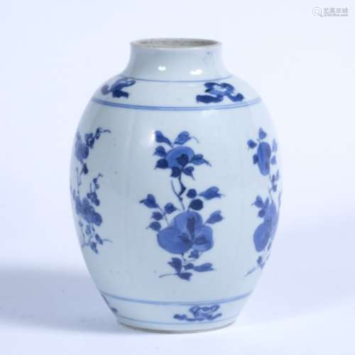 Blue and white vase Chinese, Kangxi (1662-1722) decorated in lobed panels depicting flowers with a