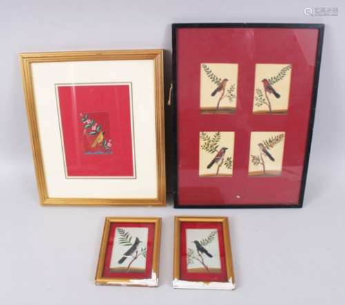 A COLLECTION OF SEVEN VARIOUS 19TH CENTURY BIRD PAINTINGS ON MICA in four frames.