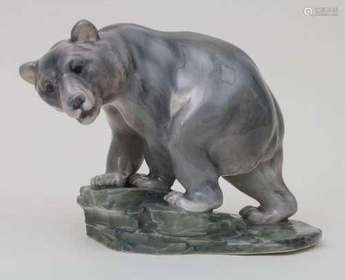 Großer Braunbär auf Felsensockel / A brown bear on…