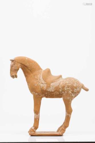A horseTerracotta sculptureChina, Tang dynasty (618-907)Thermoluminescence certificate from ASA,