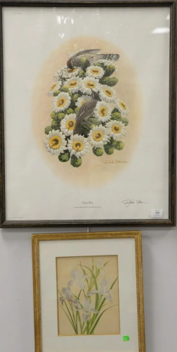 Group of six framed bird prints and lithographs to