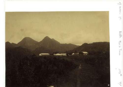Cinq photographies des Antilles au XIX° Epreuves albuminées