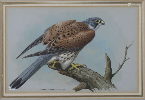 Basil Ede - 'Kestrel', watercolour and gouache, signed and dated 1976 recto, titled Moorland Gallery