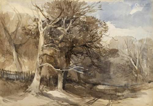 JOHN MIDDLETON (1827-1856) A NORFOLK WOODED LANDSCAPE Waterc...